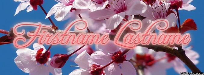 Cherry Blossom Cover